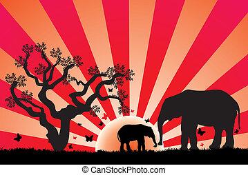 vector, elefantes, en, áfrica
