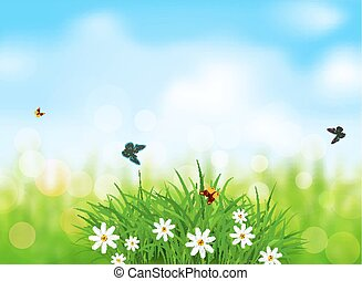 Vector element for design. Green grass with white flowers, butterflies on a  spring, meadow, blurred background