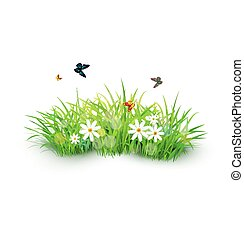 Vector element for design. Green grass with white flowers, butterflies and ladybug. isolated on white background