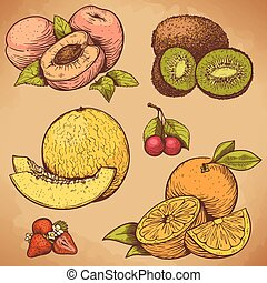 vector illustration of engraving fruits and berries in retro style