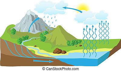 vector, esquema, de, el, ciclo de agua, en, naturaleza