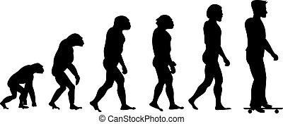 Vector evolution sport silhouette