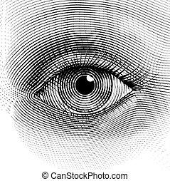 Vector eye - Vector human eye in engraved style. Eps8. CMYK....