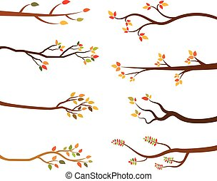 Vector Fall Tree Branches