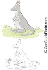 Vector family of kangaroo