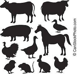Vector farm animal black silhouette