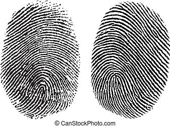 Vector Finger Prints - Two detailed vector thumb prints....