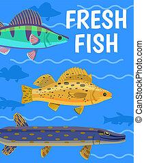 Vector Fish Illustration on Aquarium Background