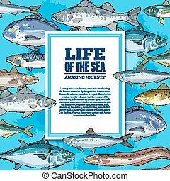 Vector fishes sketch poster sea life ocean fish