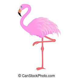 vector, flamingo