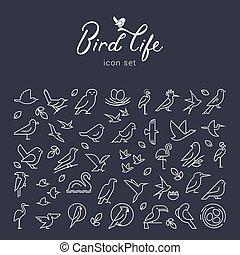 Vector flat birds icon set in thin line style. Simple minimalistic bird logo. Birds icon, animal sign, symbol isolated on background.