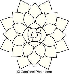 Vector flat black line icon logo of succulent