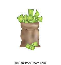 vector flat cartoon big bag with dollar cash