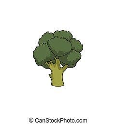 vector flat cartoon broccoli isolated