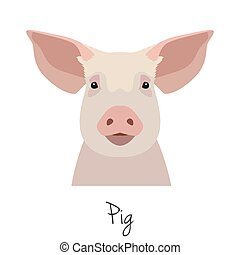 Vector flat, cartoon style pig head