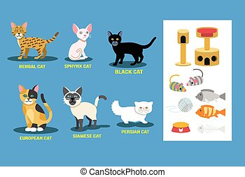 Vector flat cat set