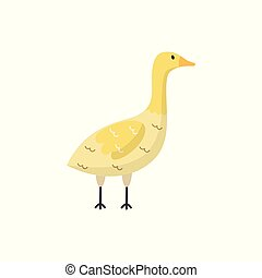 Vector flat goose bird isolated