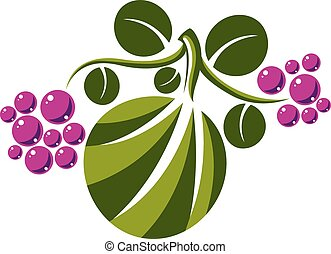Vector flat green leaf with tendrils and purple seeds....