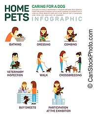 Vector flat illustration infographic of caring about pets dog.