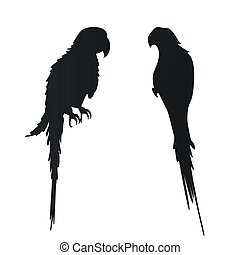 Vector flat illustration with silhouettes of parrots on a white background