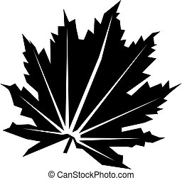 Vector flat leaf icon isolated on white.