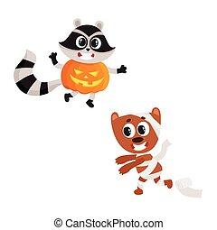 vector flat sraccoon wearing pumpkin, mummy dog