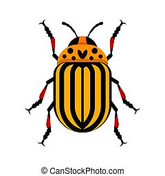 Vector flat style illustration of Colorado beetle.