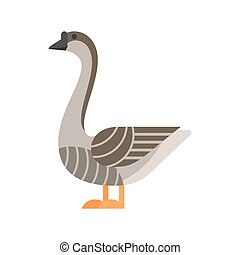 Vector flat style illustration of goose.