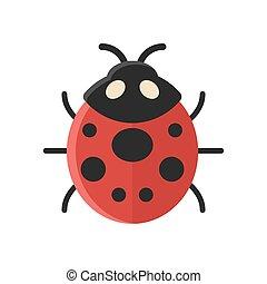 Vector flat style illustration of ladybug.
