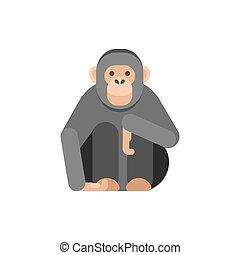 Vector flat style illustration of monkey.
