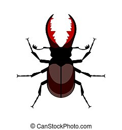 Vector flat style illustration of stag beetle.