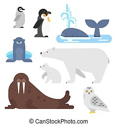 Vector flat style set of arctic animal. Walrus, whale,...