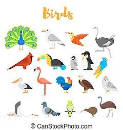 Vector flat style set of birds.