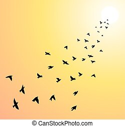 vector flock of flying birds towards bright sun