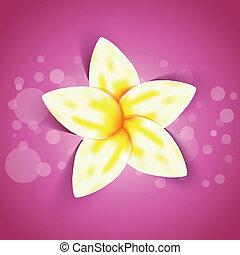 vector, flor amarilla