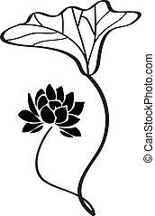 vector, flor, loto