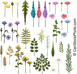 Vector floral Art Brushes for your design.
