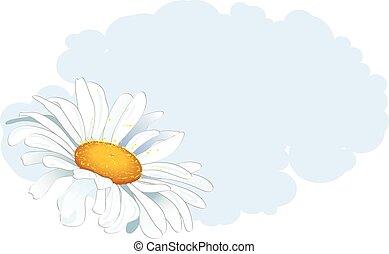daisy and cloud