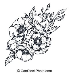 Vector black and white floral composition, bouquet of hand drawn anemone flowers, buds and leaves in sketch style isolated on white background. Beautiful illustration for spring design or coloring book.