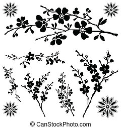 Vector Floral Ornaments - Set of floral illustrations