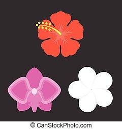 Vector flower icons set, flat design