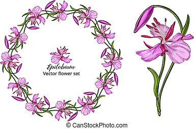 Vector flower set, with pink delicate flowers
