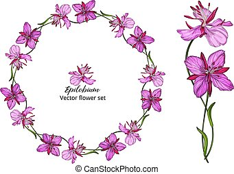 Vector flower set, with pink flowers