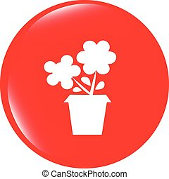 vector Flower web buttons for website or app isolated on white