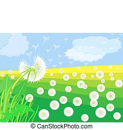vector flowering dandelion on a green meadow