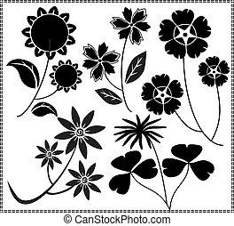 vector flowers 12