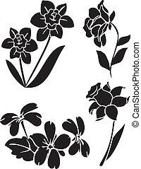 vector flowers 21