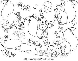 Vector Forest Squirrels Set. Squirrels Clipart Vector Illustration.