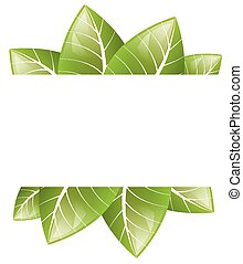 Vector Frame of green leaves on a white background