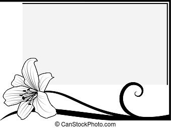 lily - vector frame with lily in black and white colors